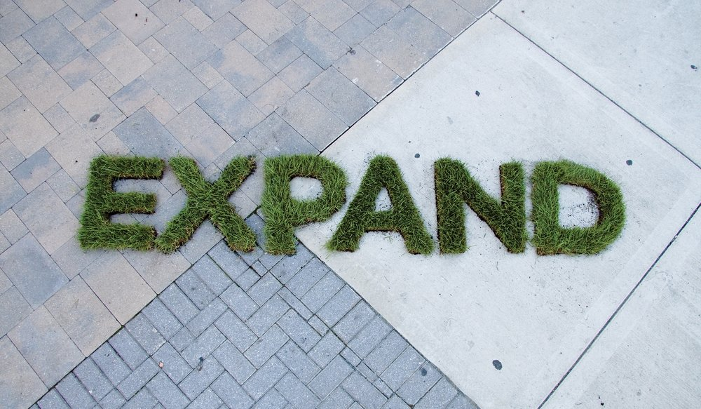 jenn-maine-scogin-solace-magazine-lettering-grass-3.jpg