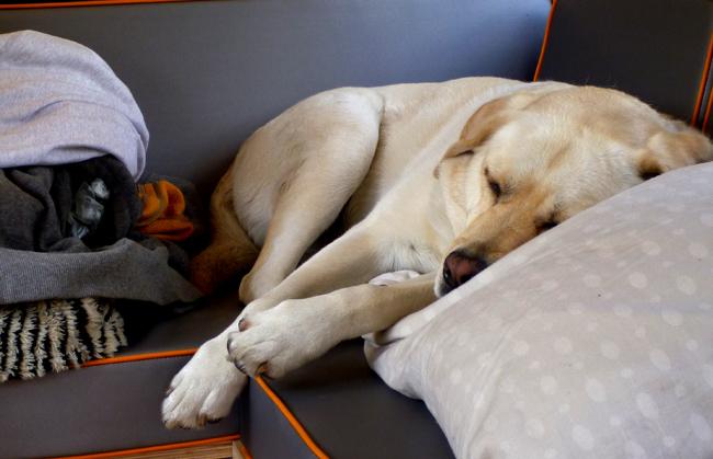 sleeping karma