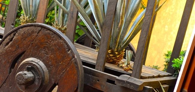 agave cart