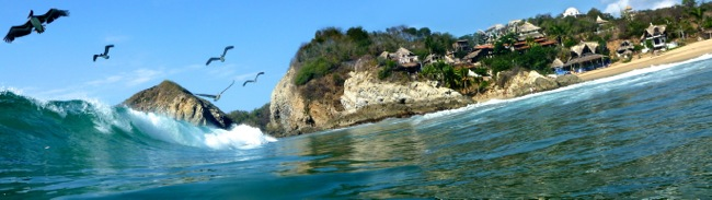 pelicans surf3