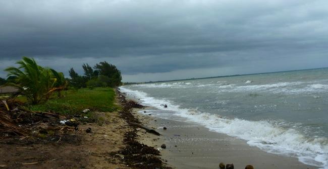 windy seas