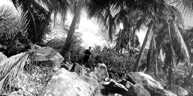 jen jungle