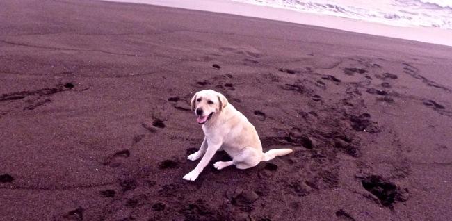 karma black sand