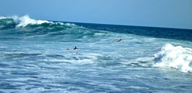 surf el zonte