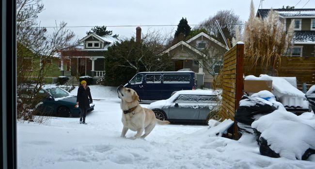 karma snowball