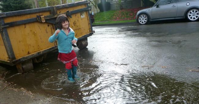 miri puddle
