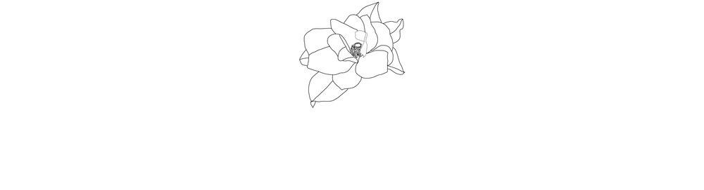 magnolia-long-01.jpg