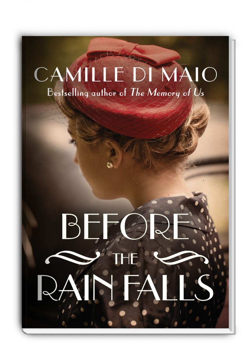 Before the Rain Falls by Camille Di Maio