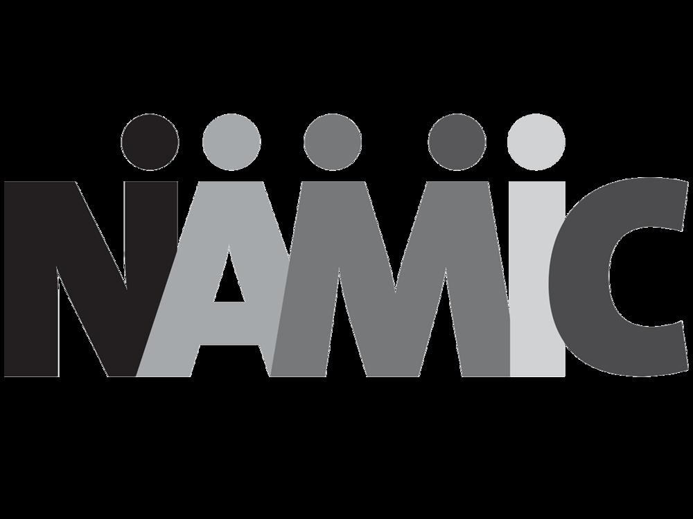 NAMIC_SOCAL_Logo_1200x900.png