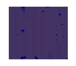 bion_logo 250px.png