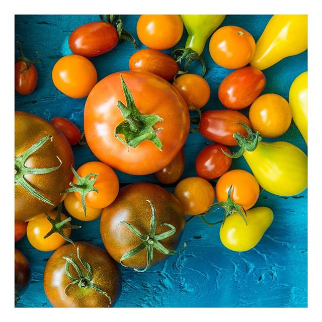 Did you know that you can consume a different type of tomato every day for 20 years?! There exists 7500 different tomato species worldwide🌍 Not only are they one of the most powerful cancer-fighting foods, but they are also a natural anti-inflammatory. It's important to eat organic tomatoes however since they are one of the 'dirty dozens'! 🍅 #nutrition #foodismedicine #foodishealth #healthyfood #healthylifestyle #healthyhabits #healthyhabitudes #healthcoach #nutritionist #eatwelltofeelwell #anticancer #antiinflammatorydiet #antiinflammatory #anticancerfood #functionalmedicine #health #healthyeating #vegan #vegetarian #vegetables #tomatoes #organic