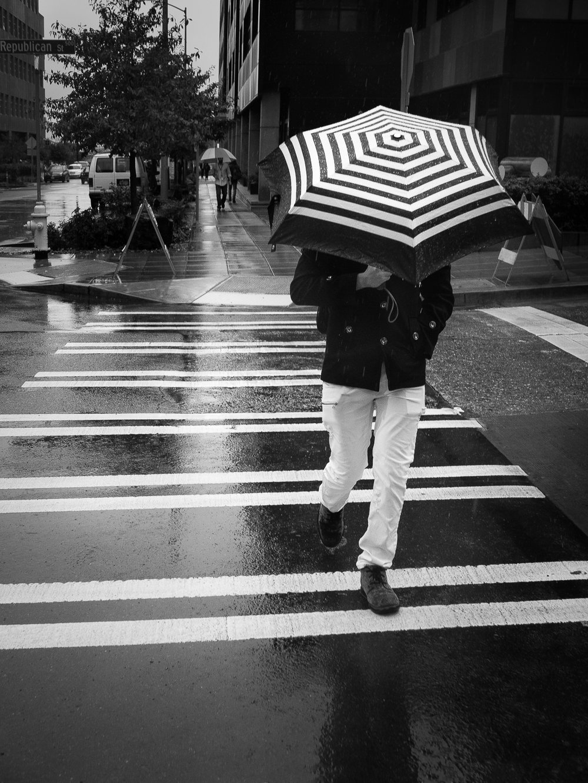 Karolina Trapp Tales of Rain 04..jpg