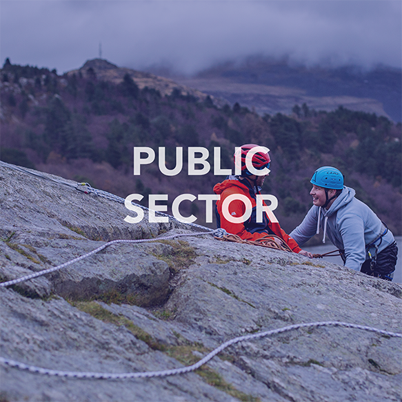 Public Sector Icon.png