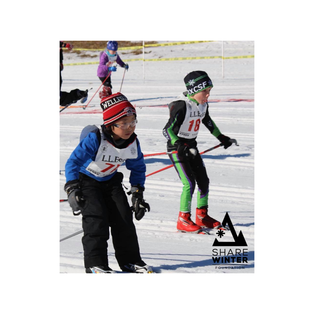 Nordic Skiing.png