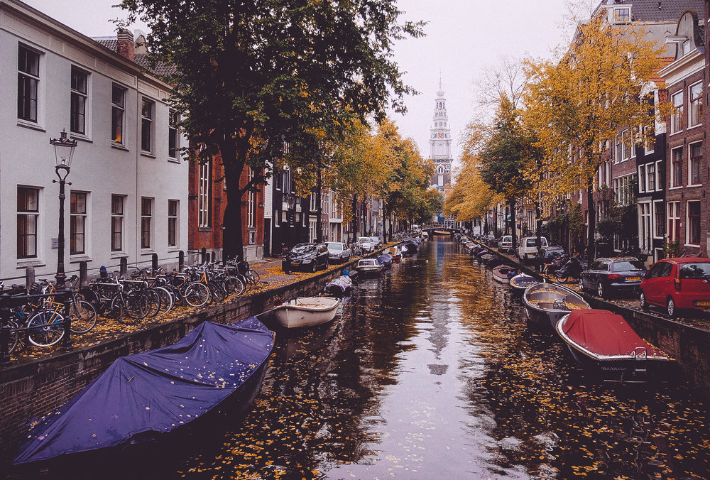 Amsterdam Autumn-9.jpg