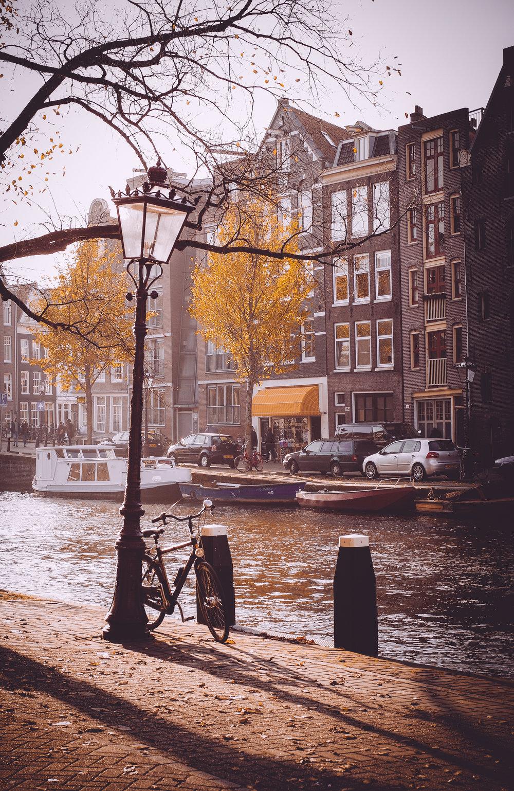 Amsterdam Autumn-20.jpg