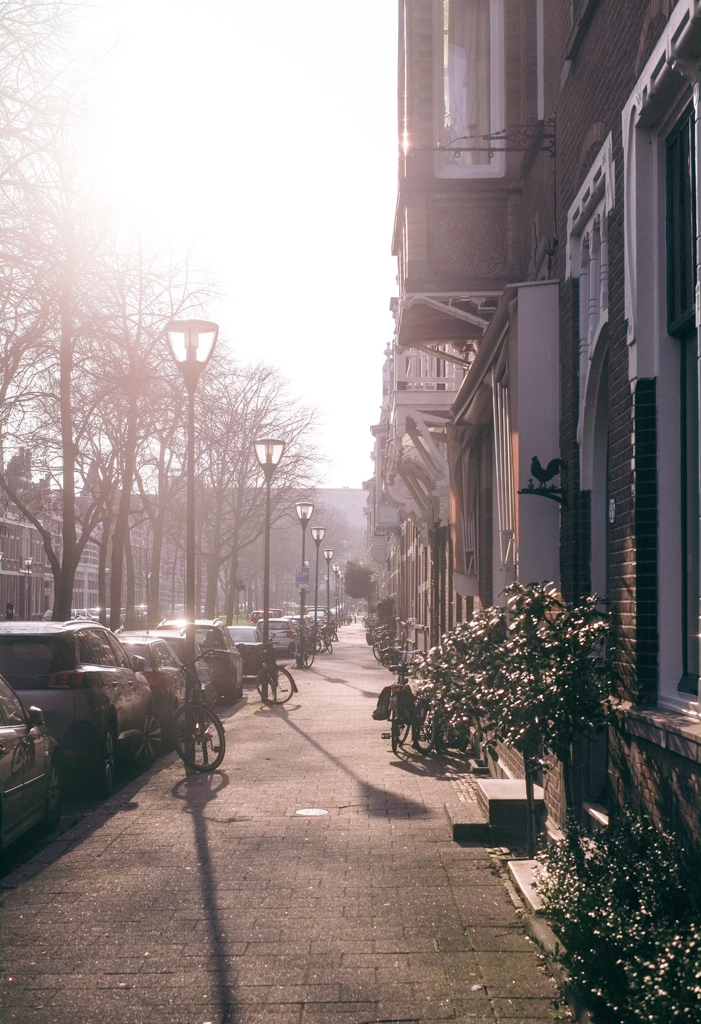 2018 JAN Rotterdam Jen+York Home se+-9.jpg