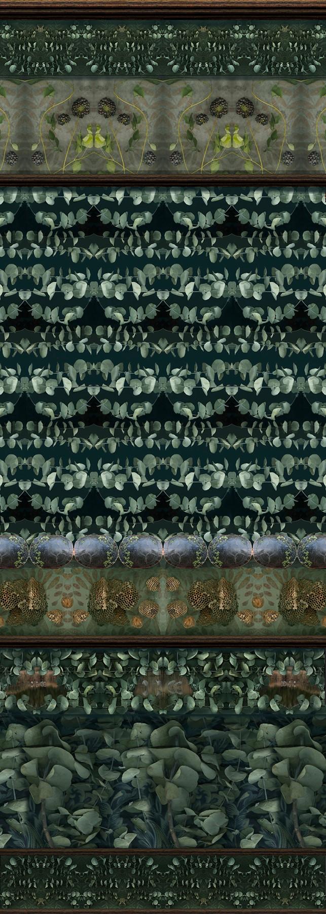 frank_specimen_panel_with_eucalyptus_turtle_shells_and_honeycomb_54_x_1925.jpg