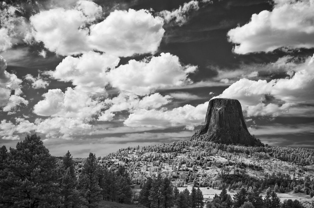 krist_devils_tower_national_monument_20_x_30_infrared_photography.jpg