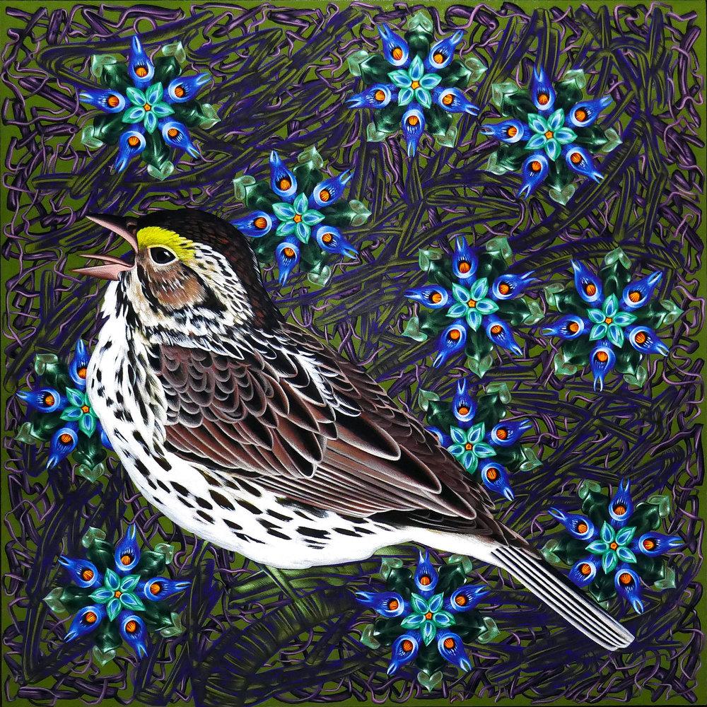 Veara Exult_44 Savannah Sparrow 30x30 copy.jpg