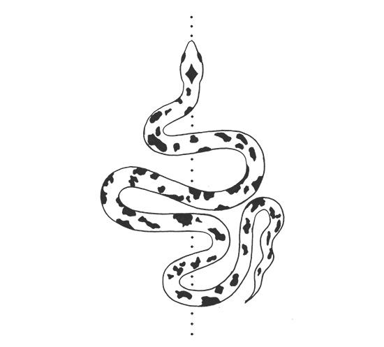 snake550px.jpg