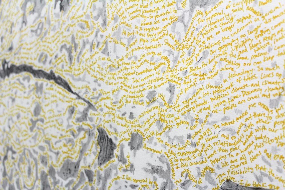 Self-Organization, ink, charcoal, acrylic on Stonehenge 24 x 30 inches, 2016