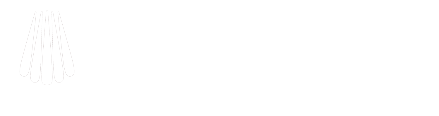 Blac Inc. - Electrohydraulic Actuators and Control Systems