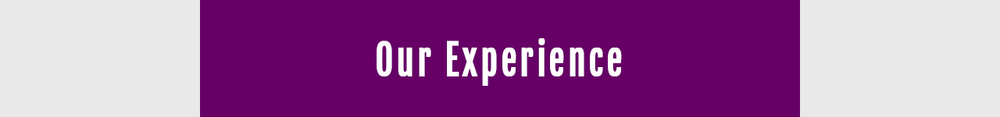 perceptum-group-clients-experience.png