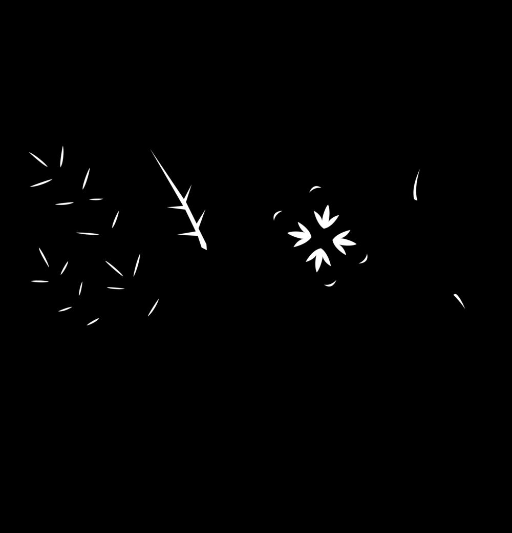 BiotaFermenation.Logo.ExtraLarge.png