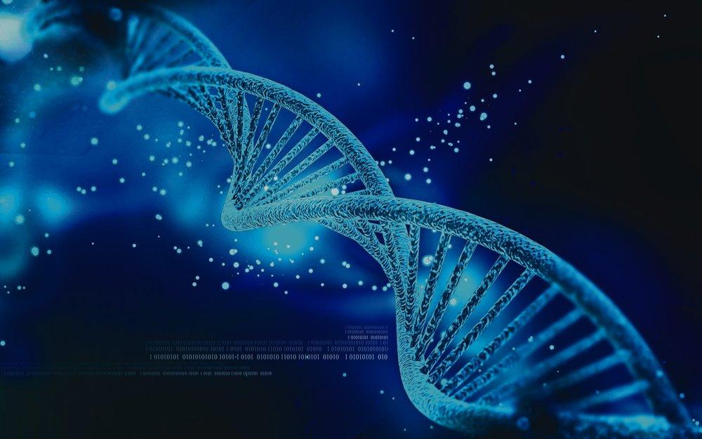 0214-hitn-dat-genomics-dna.jpg
