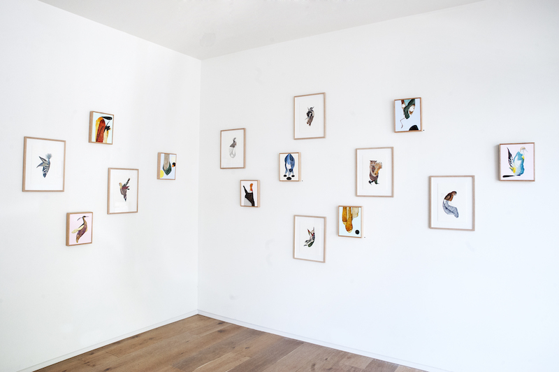 Installation view,   Birdland    .M Contemporary, Sydney