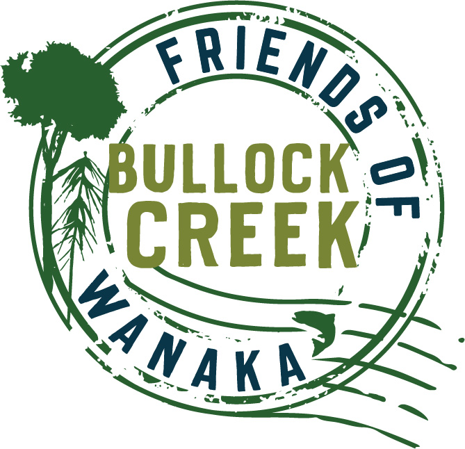 Friends of Bullock Creek