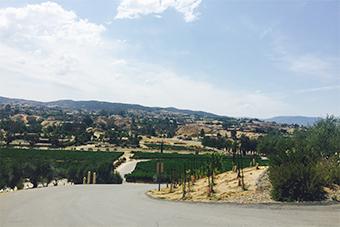 初めて友達とワイナリーで有名なテメキュラという街に1泊旅行しました。カリフォルニアのワインは本当においしいです。
