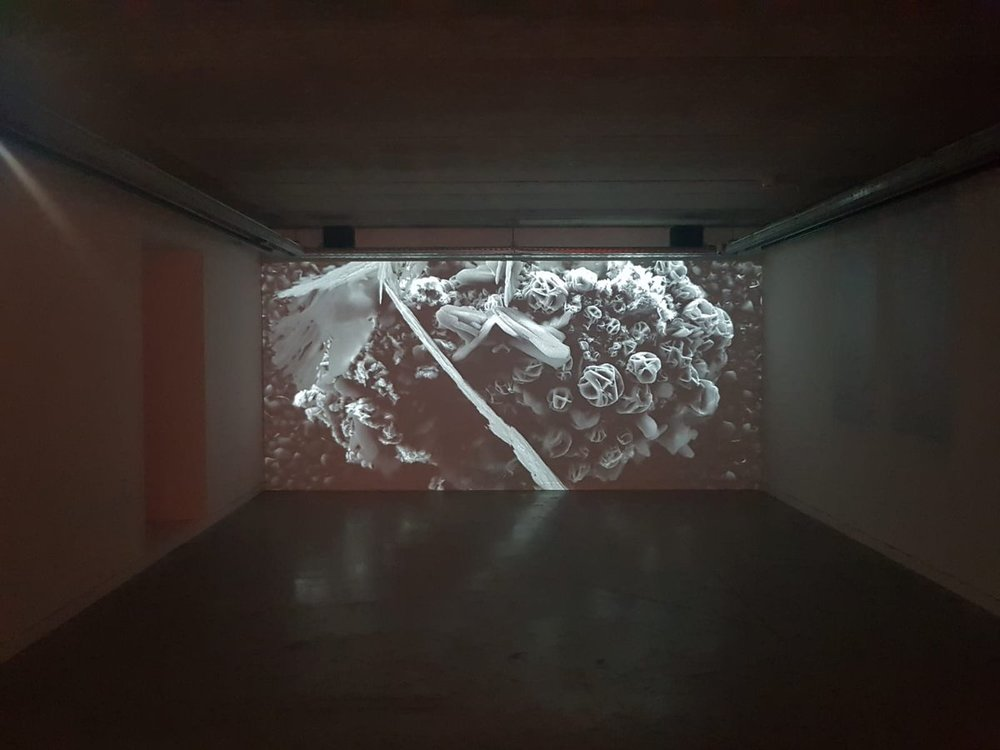 Joanie Lemercier |   Microscapes , Investigations of the invisible