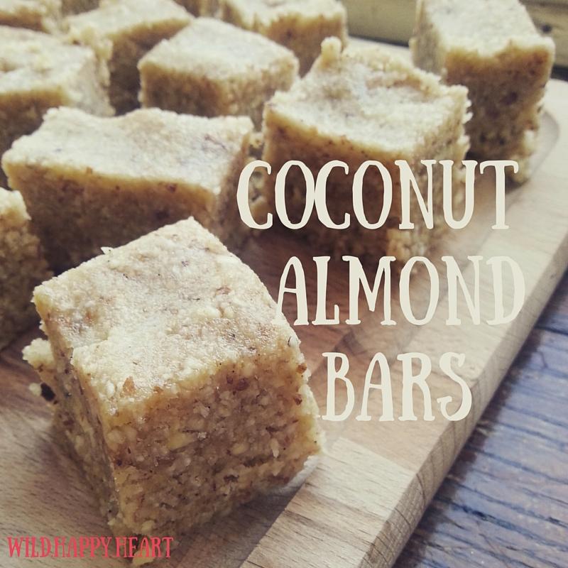 Coconut & Almond Energy BArs