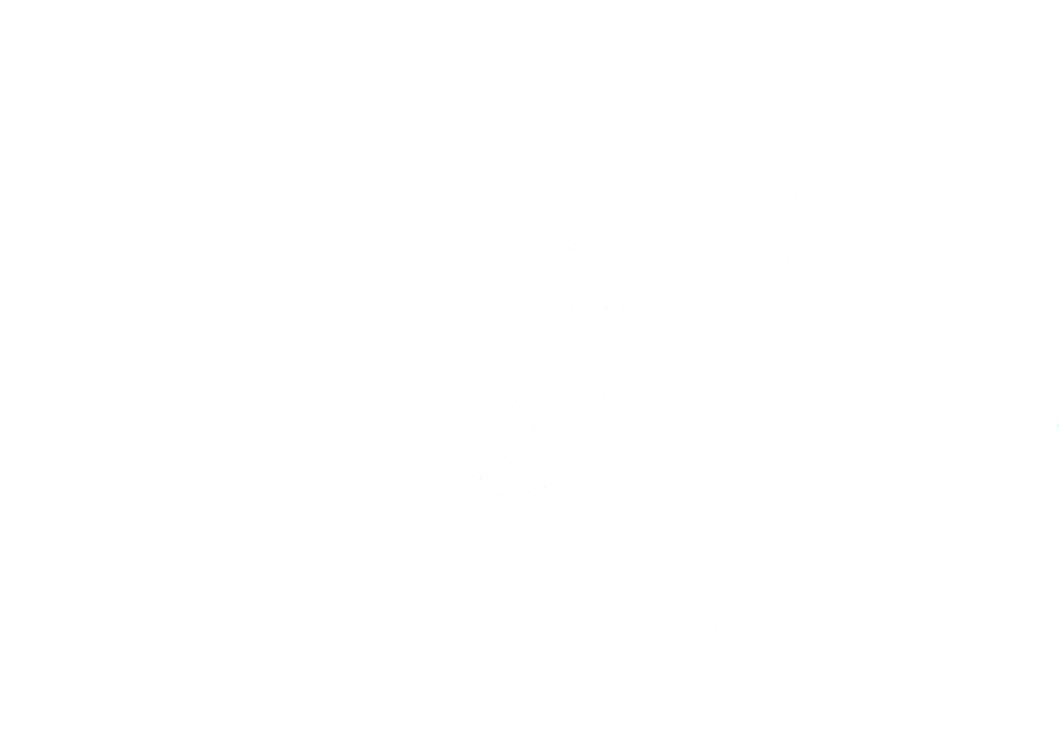 Ashly • Wishing on a Star Travel