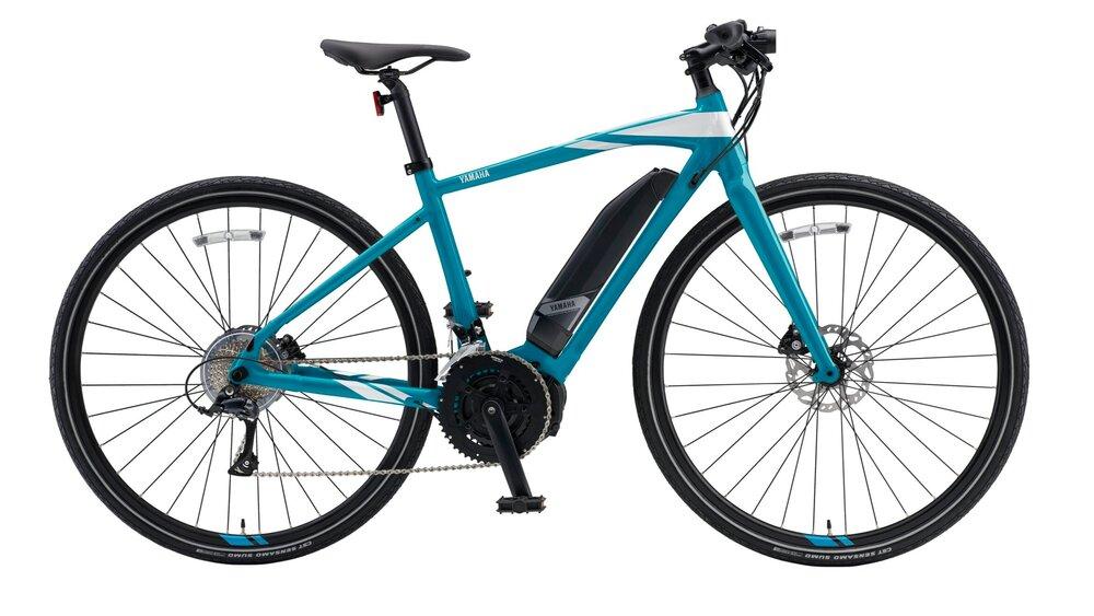Seattle Electric Bike
