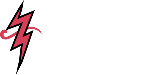 Coffee roaster - Eccentricity Coffee Co.