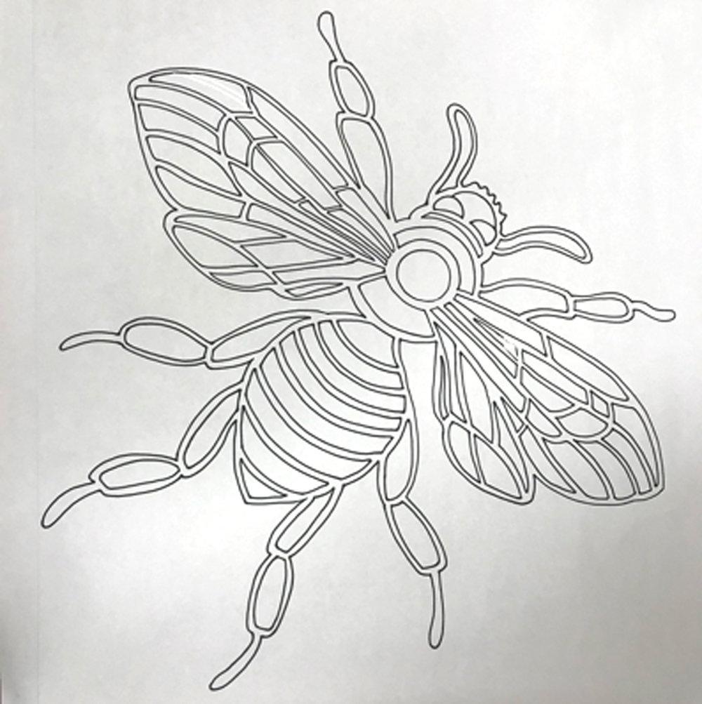 HeatherRigby_Bee_Drawing.JPG