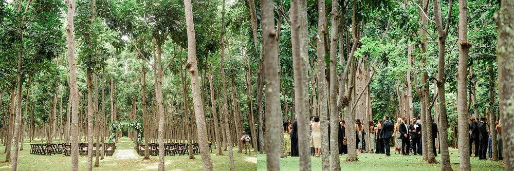 Na 'Aina Kai Botanical Gardens Kauai Hawaiian Wedding Stewart & Connie Photography_0009.jpg
