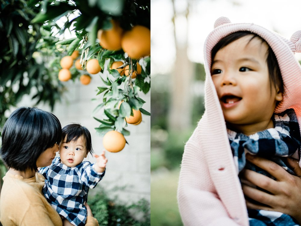 Cozy Home Backyard Los Angeles Family Session Stewart and Connie Photography_0001.jpg