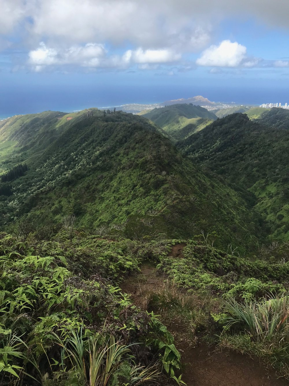 Lucky live Hawaii! View from Wiliwilinui Trail, 2018