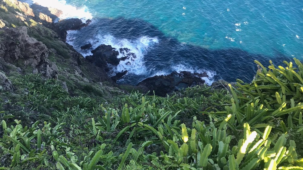View from Makapu'u Lighthouse Trail, Oahu, January 2018