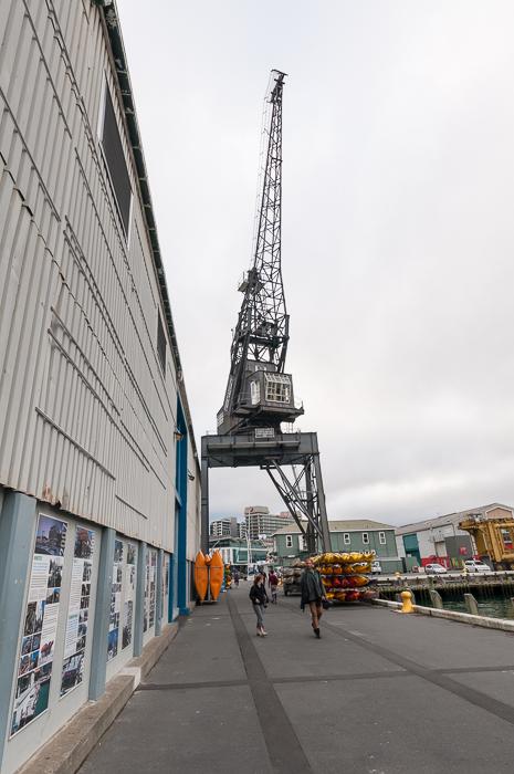 Queens Wharf sheds and cranes.