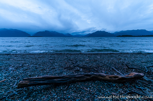 Lake Te Anau: Morning stroll from Henry Creek campsite to the shore