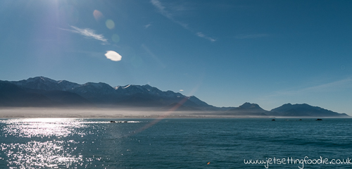 Kaikoura: Shrouded in mist that even the midday sun couldn't disperse.