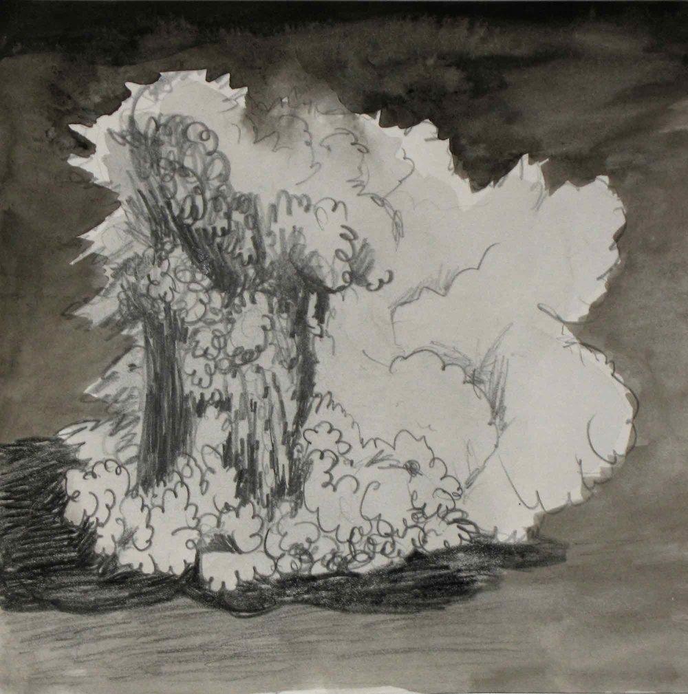 Uit de serie  Zo gaan dingen (That's the way the cookie crumbles)  potlood, inkt 25 x 25 cm, 2007-2009, privécollectie