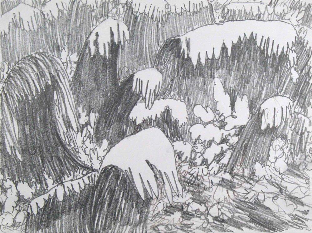 Uit de serie  Zo gaan dingen (That's the way the cookie crumbles)  potlood 24 x 32 cm, 2007-2009, privécollectie