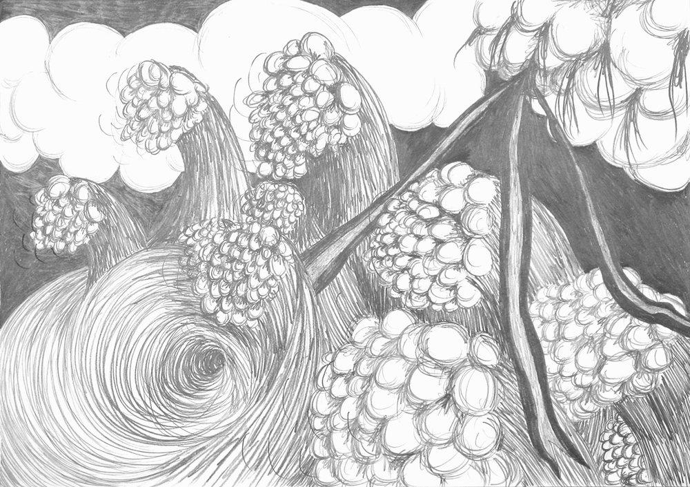 Uit de serie  Wijzelf te midden van ons allemaal (We ourselves among all of us)  potlood 42 x 65 cm, 2009