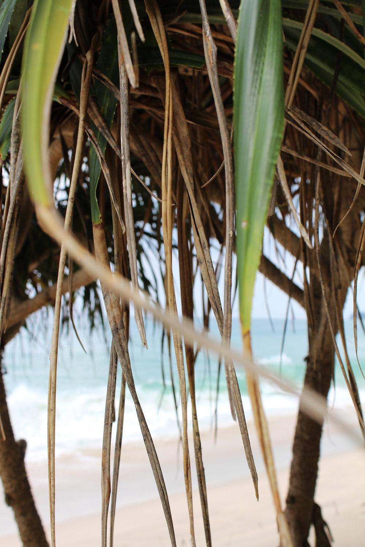 wearemad bang tao beach 01.jpg